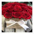 Розебук главная энциклопедия роз